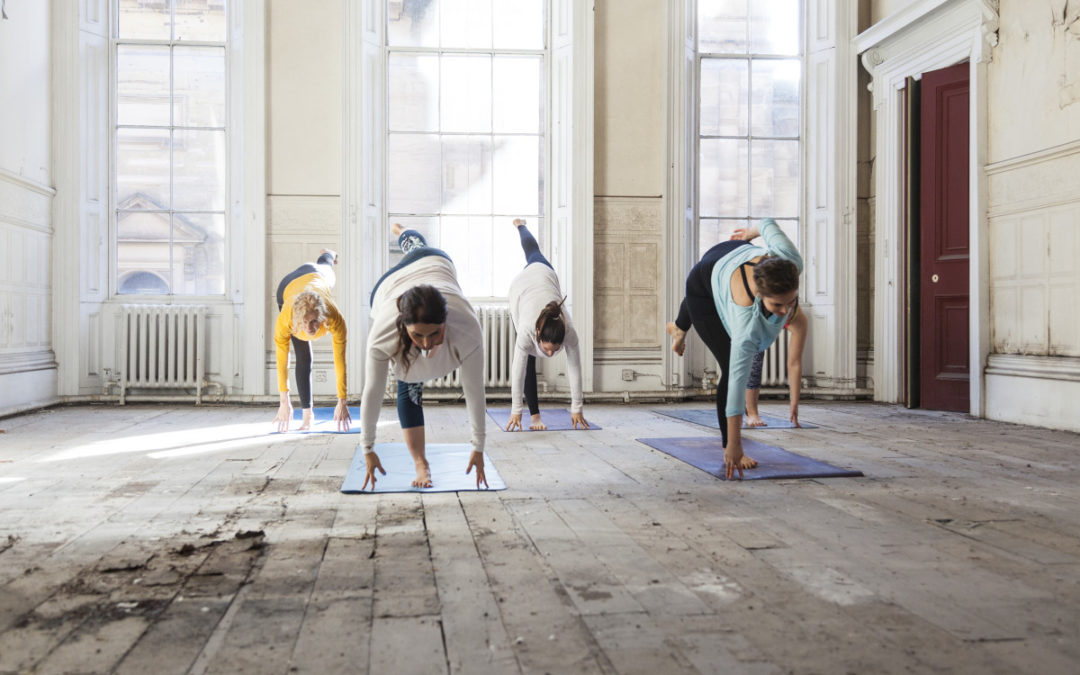 Hatha to Vinyasa – Yoga CPD Workshop